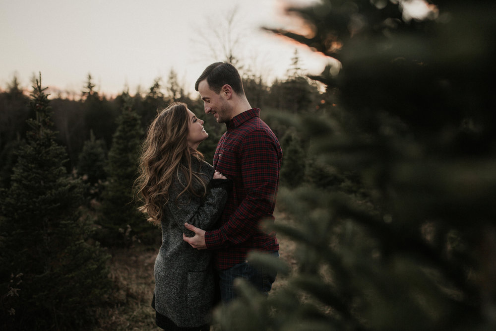 christmas_tree_farm_engagement_shoot_026.JPG