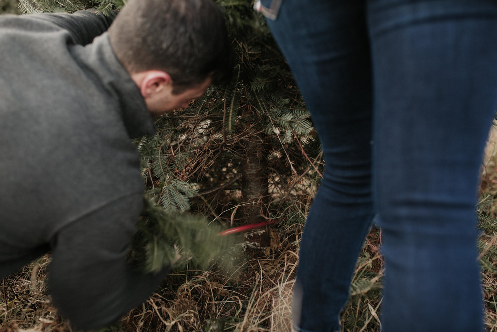 christmas_tree_farm_engagement_shoot_030.JPG