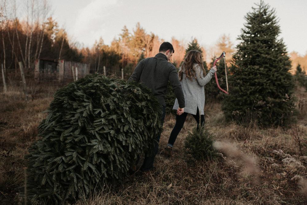 christmas_tree_farm_engagement_shoot_032.JPG