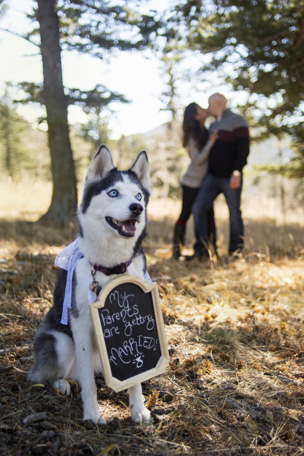 Kelsey + Jeremy's Mountain Engagement
