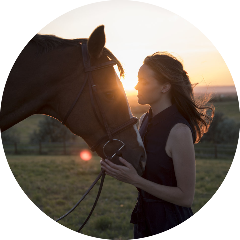 Horse+Photographer+Photography+Equine+Weddings+Wedding+Elopement+Photos.png