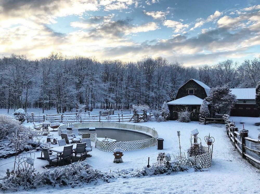 Our White Christmas at our family's farm, Honeymoon Acres in Ramsey, NJ PC:  Mary Erny