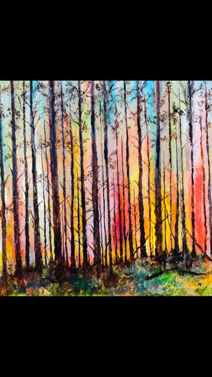 Aurora Forest