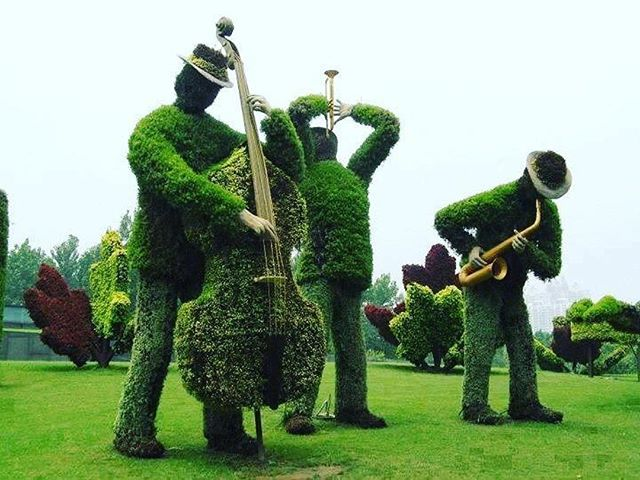 Inspirational landscaping. 🎺🎼🙌🏽 #Repost @fibonacci_city ・・・ Grass sculpture #design #grass #green #wow  #grassdesign #sculpture #grasssculpture #landscape