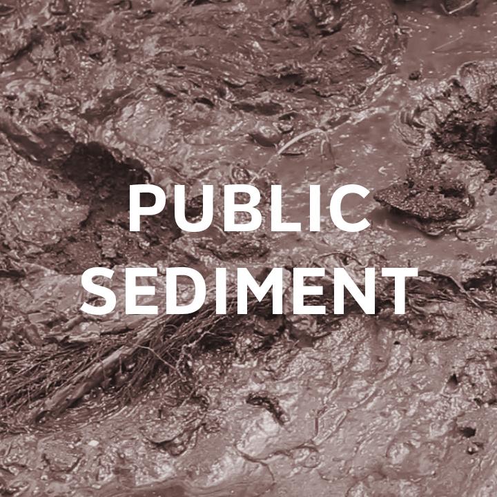 PUBLIC SEDIMENT  - SCAPE