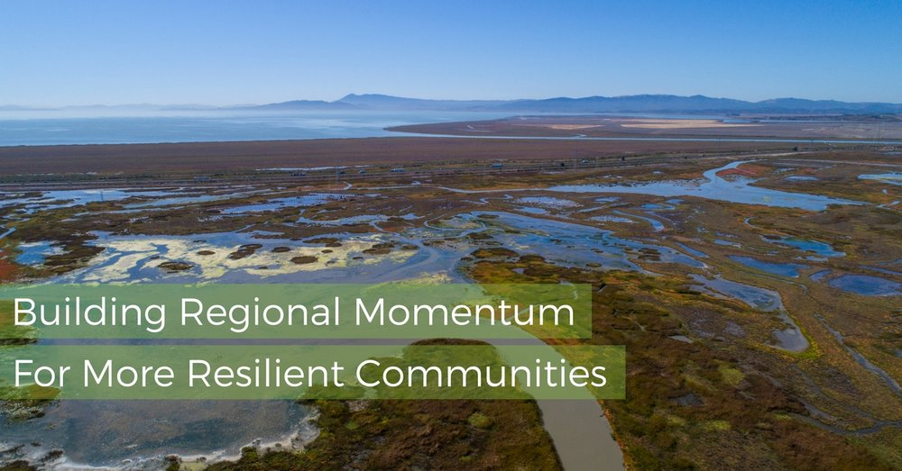 Building Regional Momentum (1).jpg