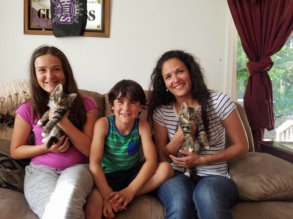 """""""We recently adopted Sarah and Earl. It didn't take long for them to be a part of the family. We are extremely happy with the kittens and with your organization. After a week of debating, we decided to keep their names as is.""""  - Bradley Williamson"""