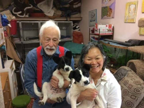 Archie and Sue with their adopted puppies Almond & Joy.  Adopted 2017