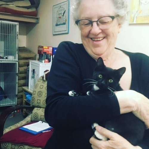 Tosca (formerly Augusta) and her new mom, Carol! Adopted September 2017.
