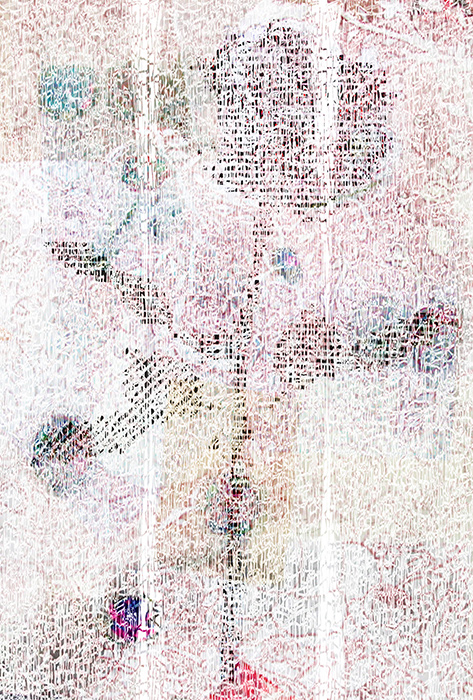 261.jpg