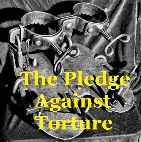 pledgevstorture3.png