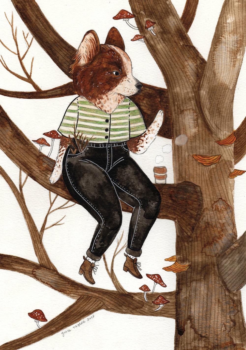 TreeClimbers.jpg