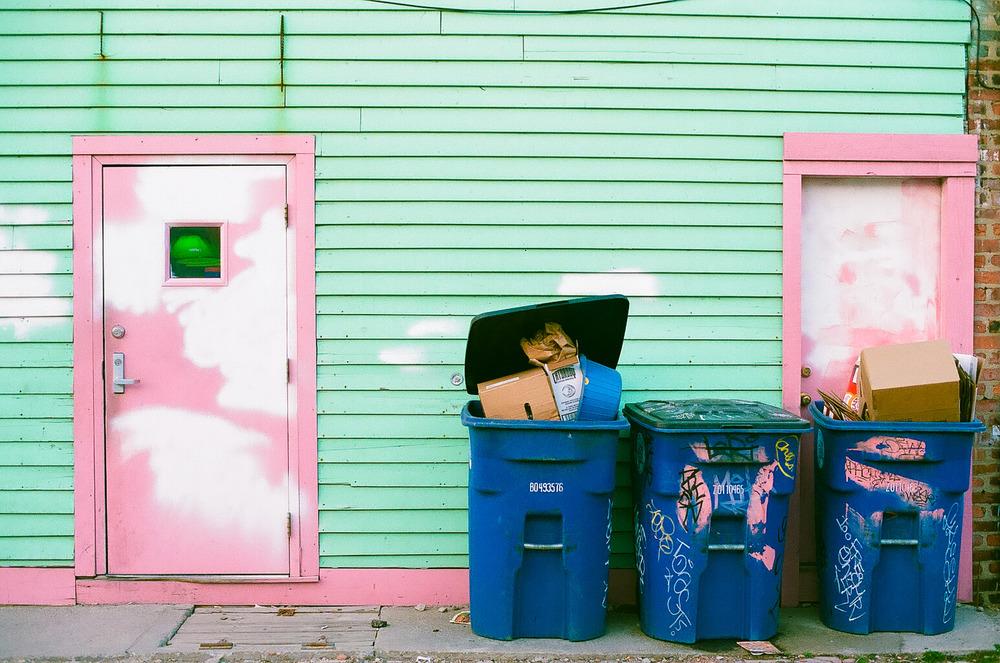 PaintedLady_Doors_NoahEliottMorrison.jpg