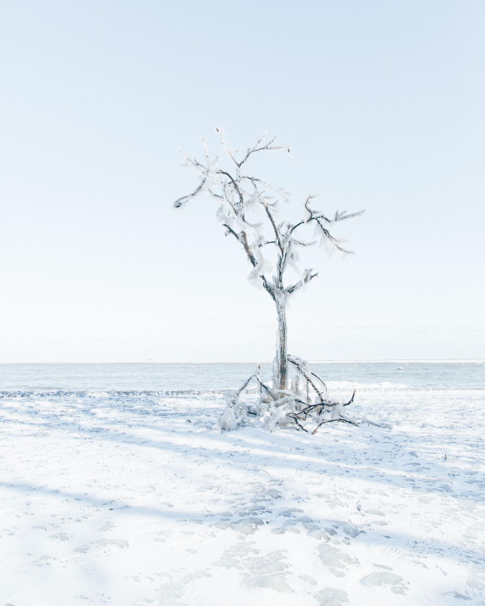 snow day-10.jpg