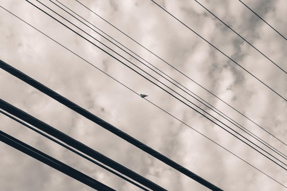 XB6A4601-2.jpg