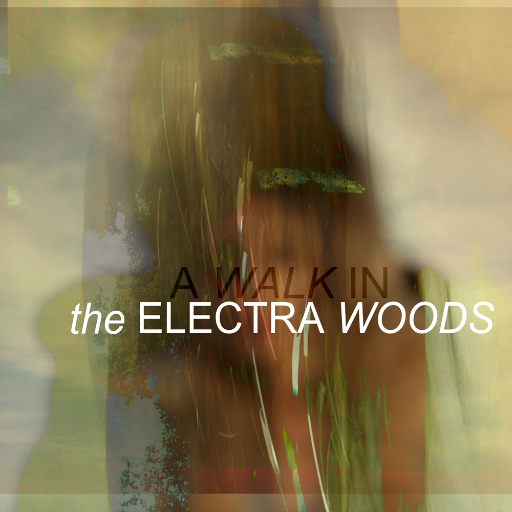 A WALK IN, the debut album from The Electra Woods, re-released through the DRESS label.