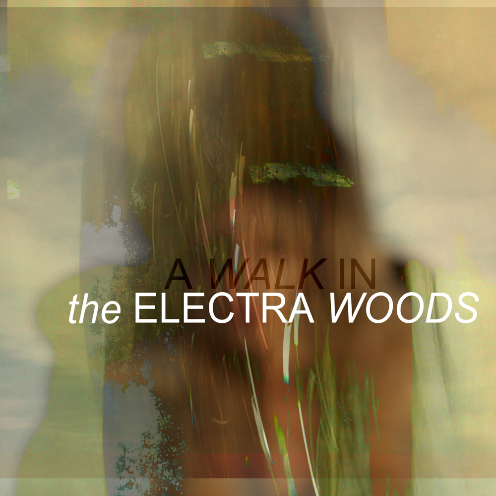 Cover artwork for A WALK IN album from The Electra Woods, released on the DRESS label.