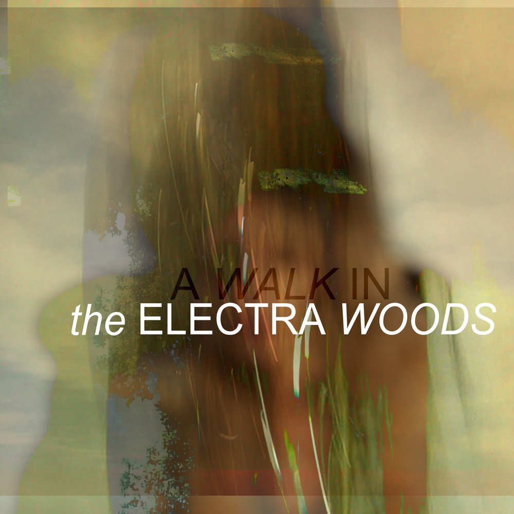 Cover artwork for A WALK IN debut album from The Electra Woods, released on the DRESS label.