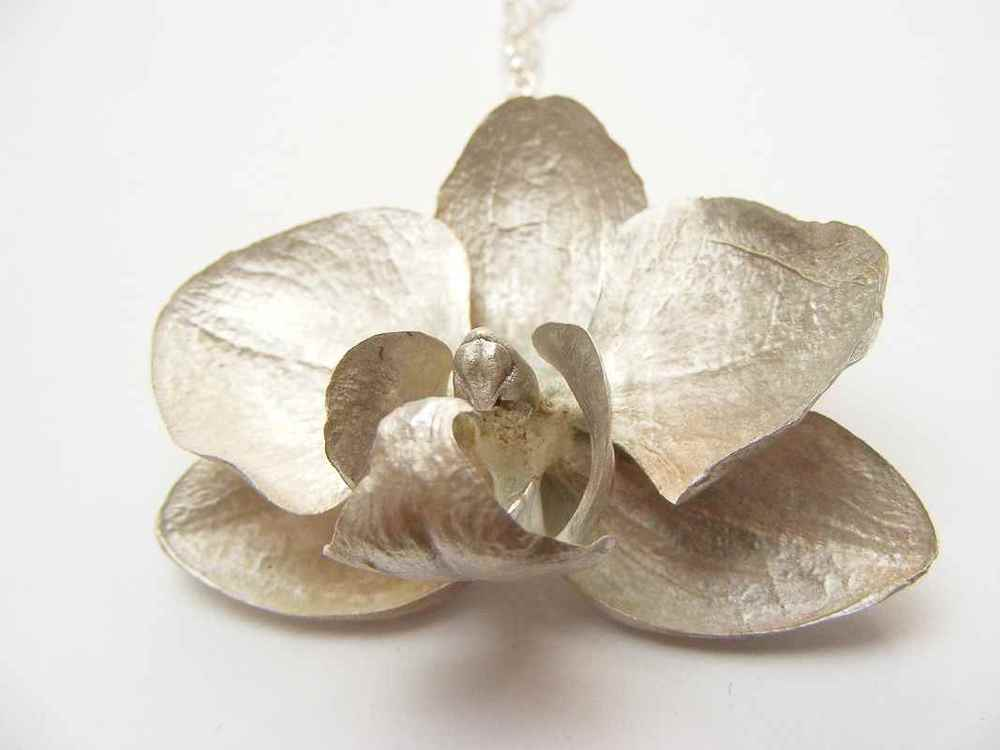 Phalaenopsis pendant (M) NBP022.jpg