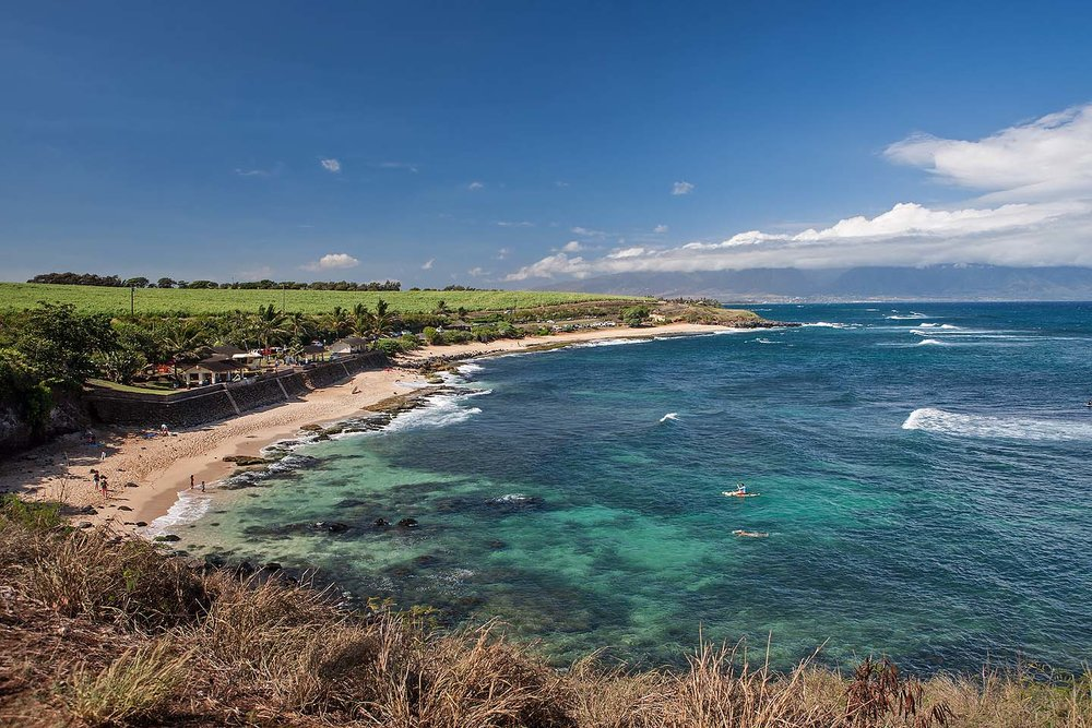 Best Things to Do in Maui: Ho'okipa Beach on the Road to Hana Tour