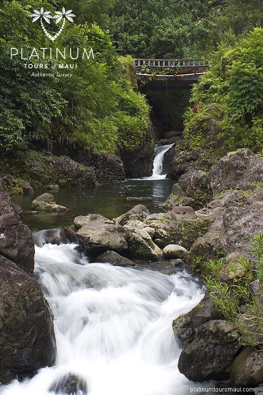 Ching's Pond, Maui