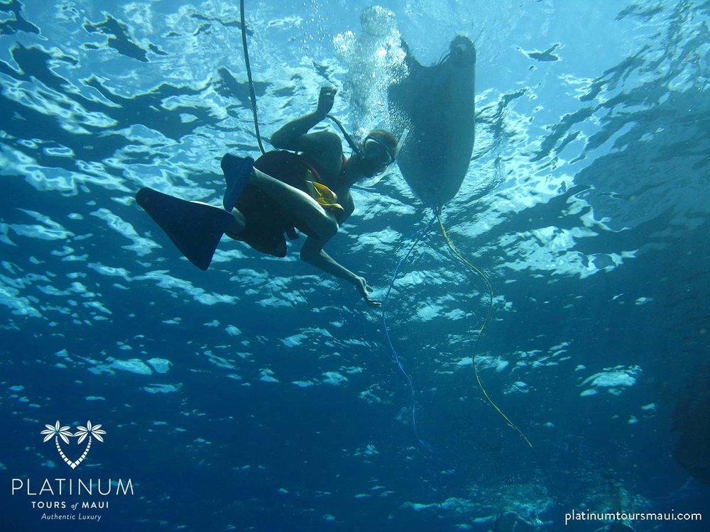 SNUBA Diving at Molokini