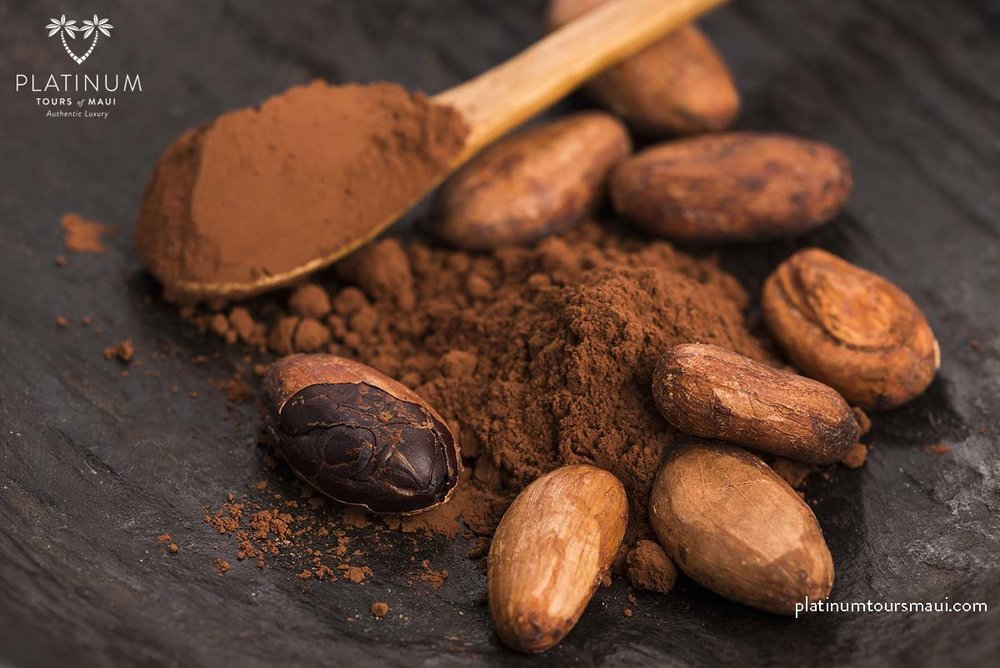 cacao beans and cacao powder in spoon 44447971_xxl.jpg