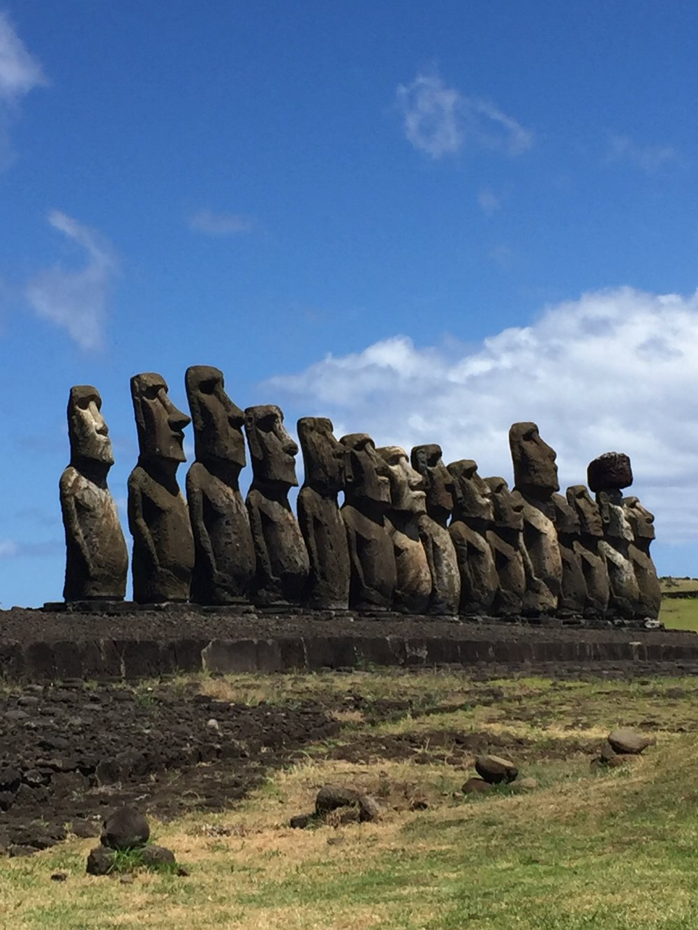 The largest site of standing MOAI