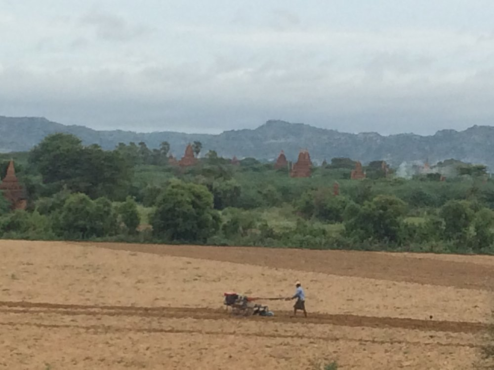 The fields with the temples, river and hills in background