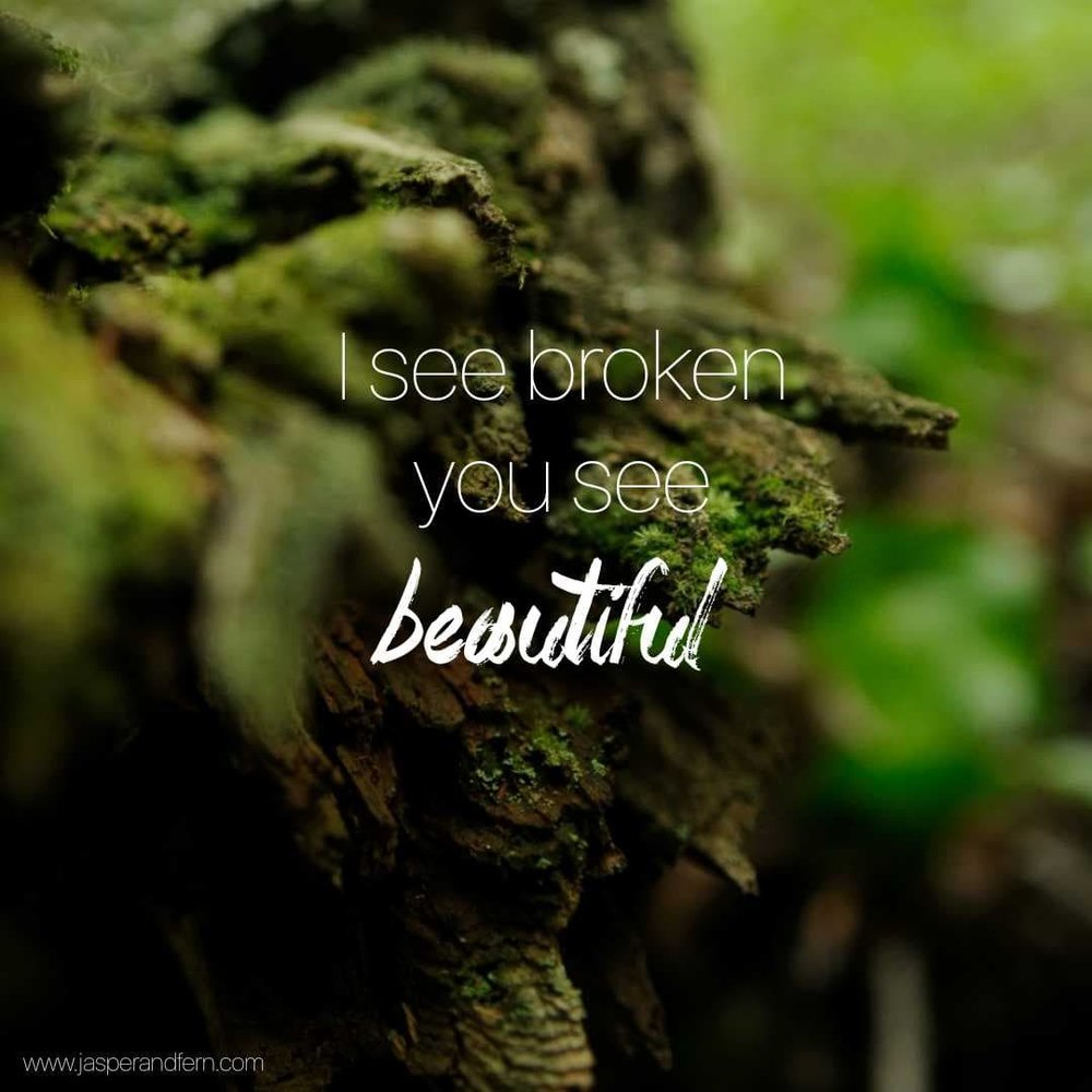 Self Worth Quotes | Quotes about Value | Inspirational Quotes for Women | Quotes about Grace | Quotes about God's Grace | Nature Quotes | Quotes on nature | Shattered | Broken | Moss covered tree | Moss covered Rock | Natalie Grant - Clean | Christian Music Lyrics | Encouraging quotes for Christian Women