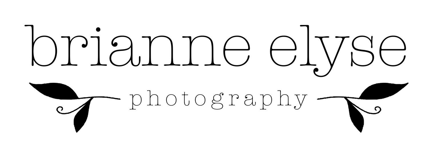 Brianne Elyse Photography