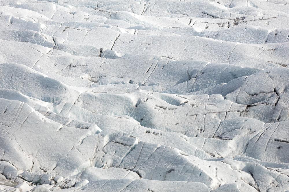 Svínafellsjökull Glacier | South Iceland - Faune