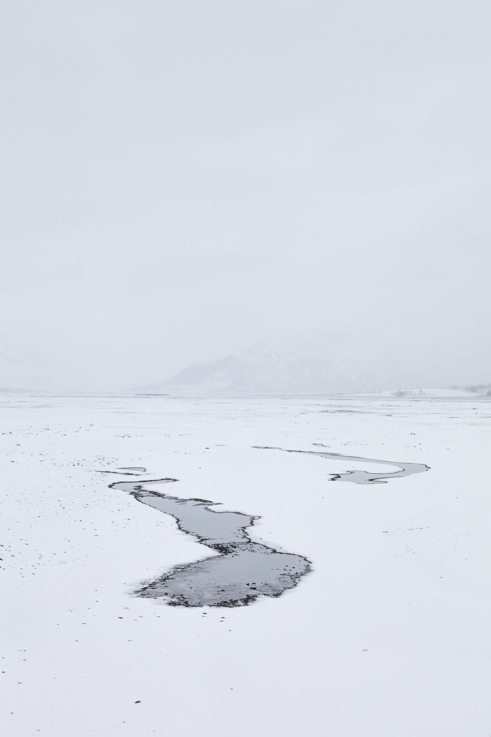 Lakes form as the snow starts to melt | East Iceland - Faune