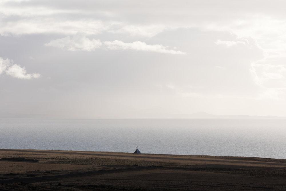 Landscapes West Iceland - Faune