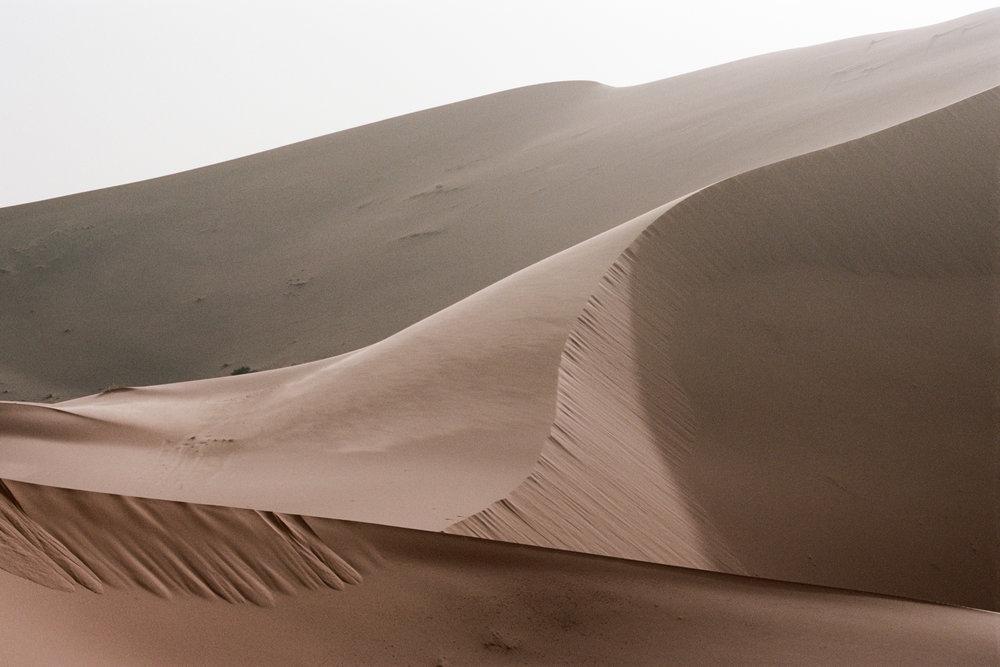 Volatile Permanence by Morgane Erpicum | Morocco - Faune