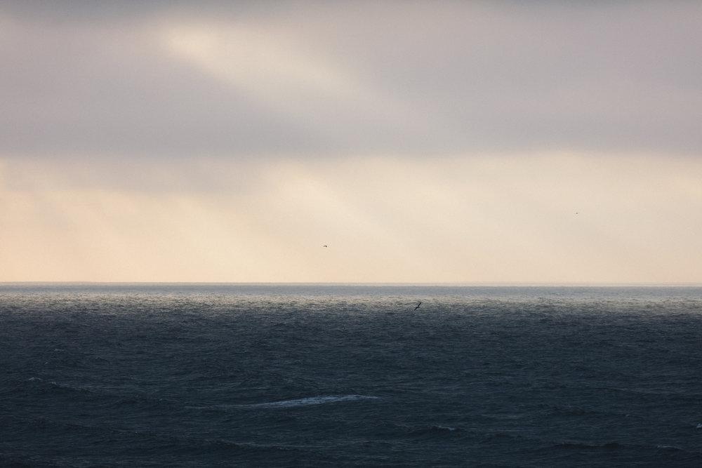 MARGATE  Dom Bridges and his Ocean