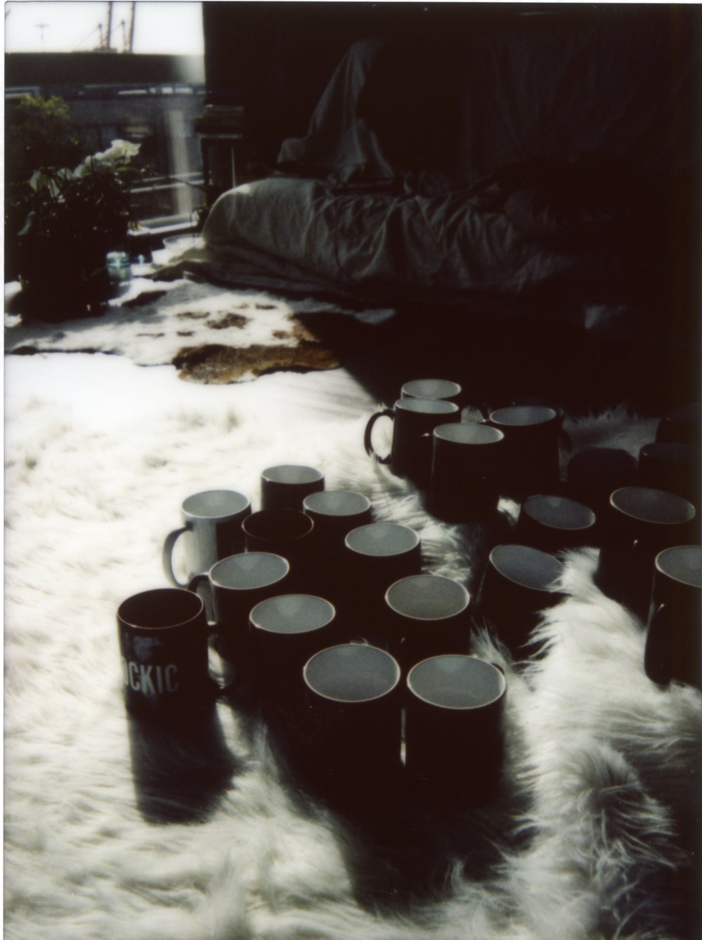 mug pics306.jpg