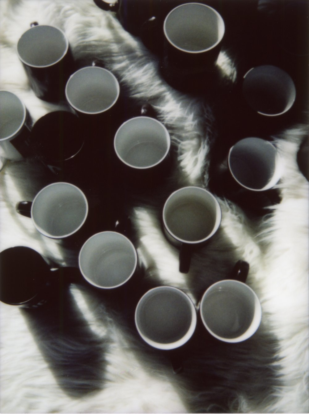 mug pics307.jpg
