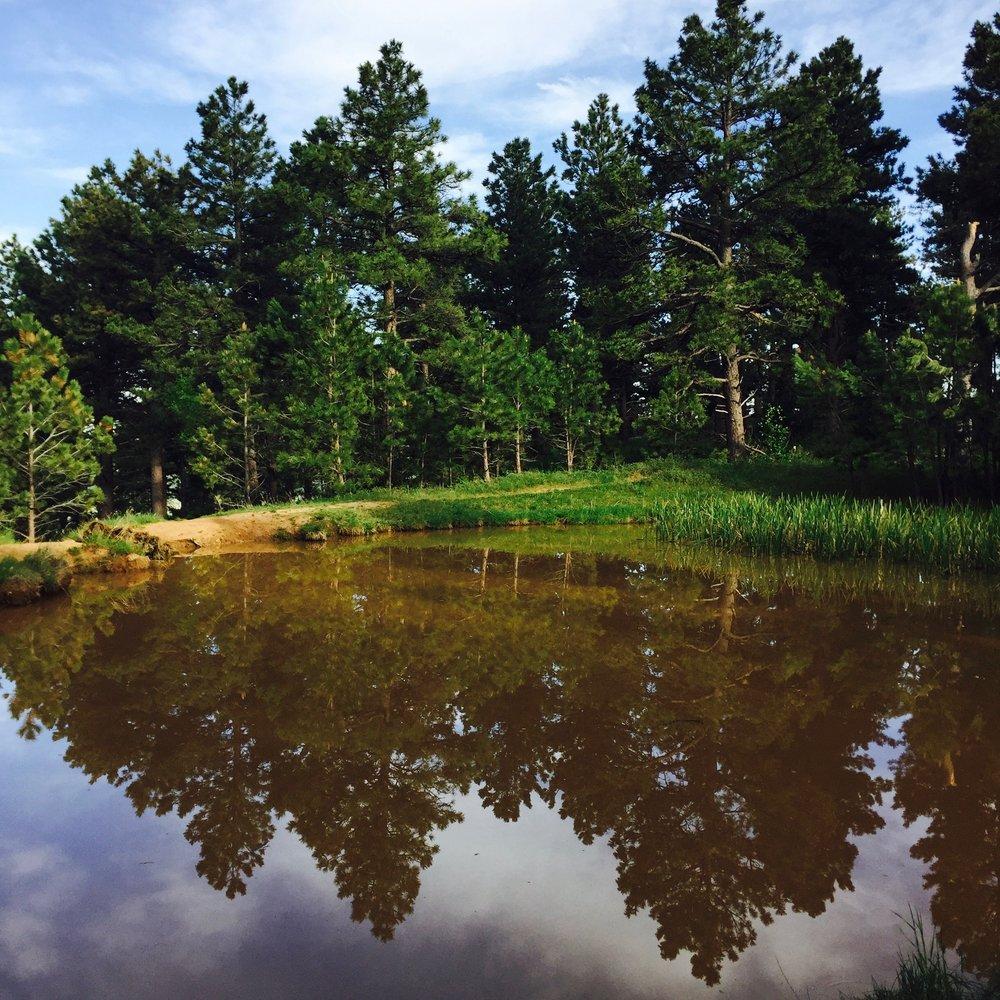 Viele Lake