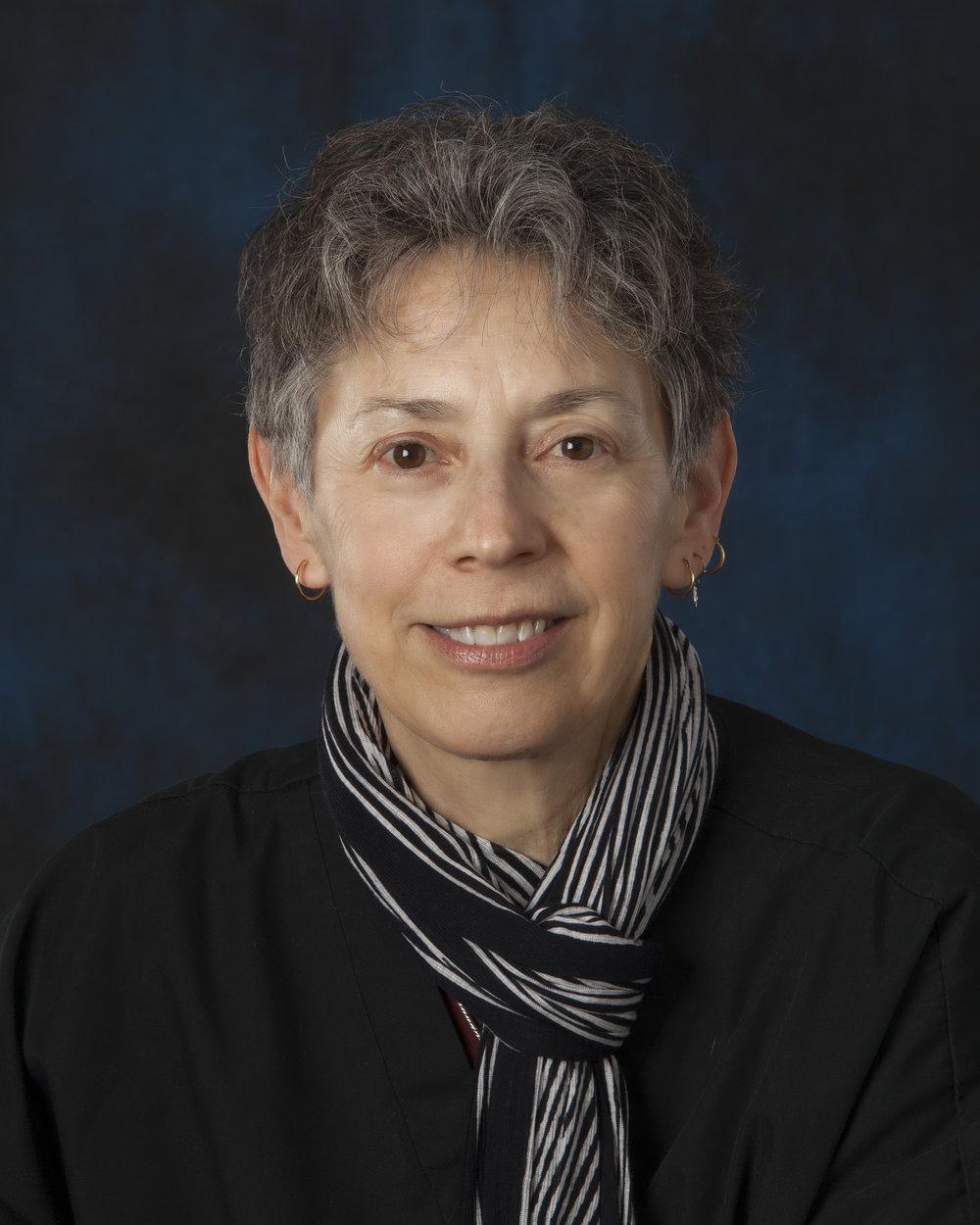 Lesley Hauser, DDS Dentist