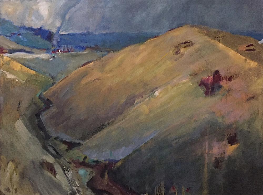 Coastal Valley, CA  48 x 48   oil on canvas