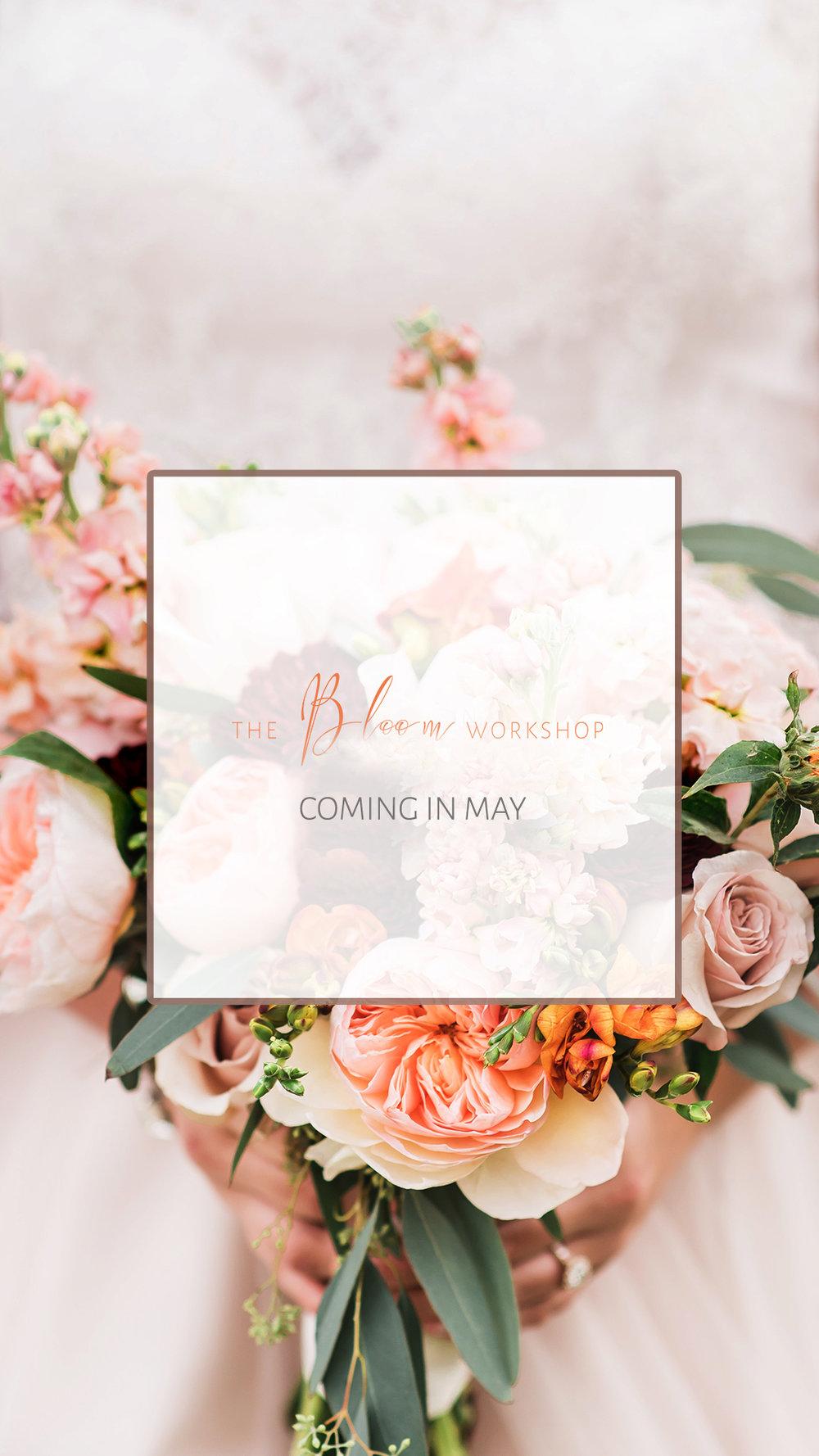 Bloom copy.jpg