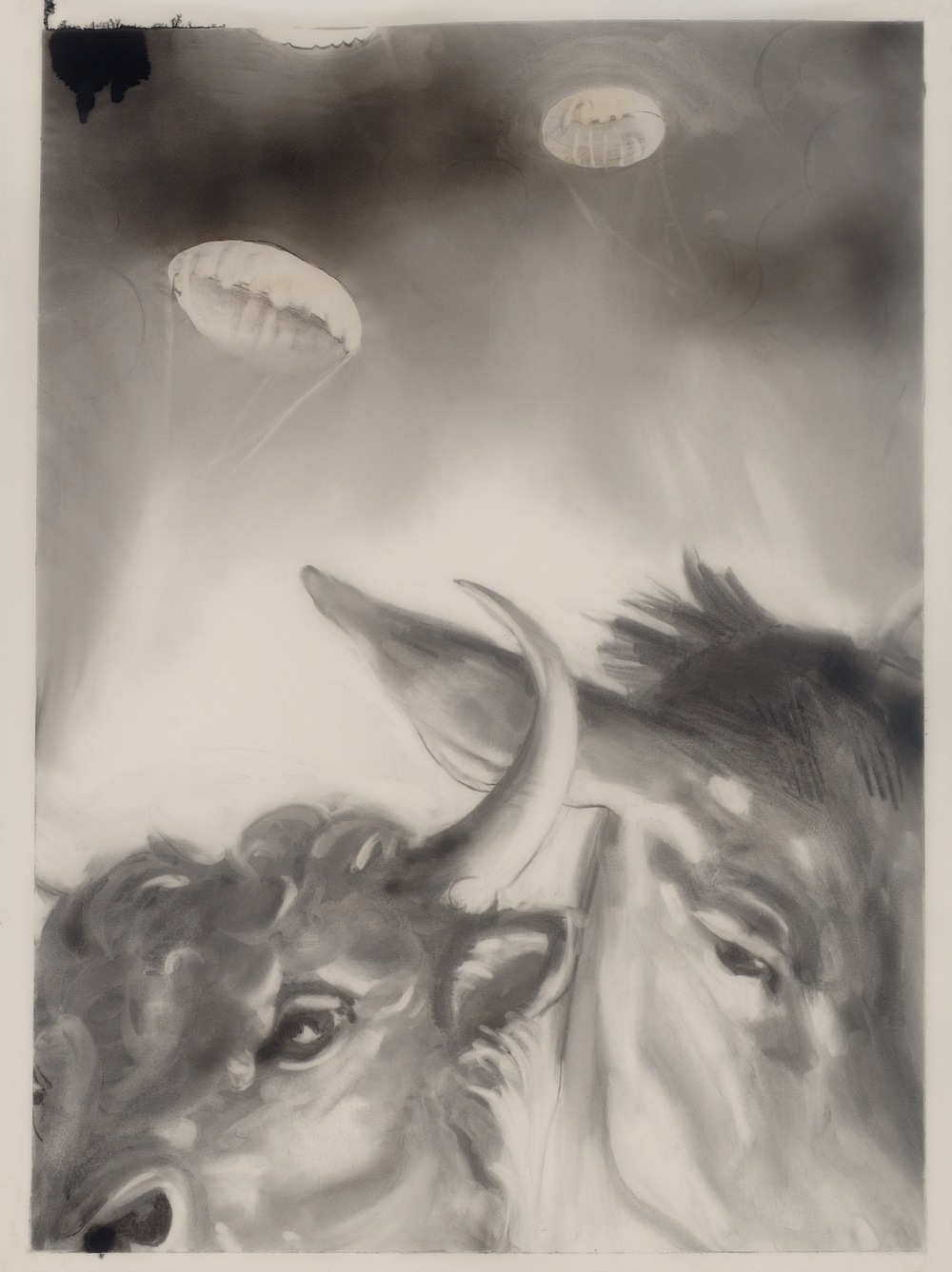 bull and donkey, 2012, graphite, charcoal, acrylic airbrush on vellum, 38%22x25%22.jpg