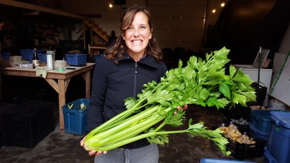 Giant celery!