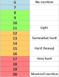 The Borg scale: rating of perceived exertion.  Image credit: http://www.vavaveteran.co.uk/tag/borg-scale/