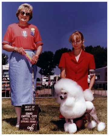 Best of Breed @ Idaho circuit under Lorraine Boutwell