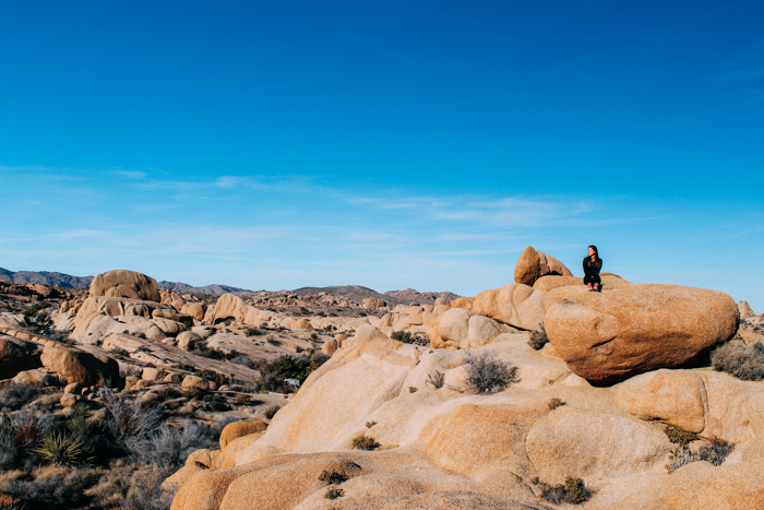 Joshua Tree National Park on Anything For The Crown