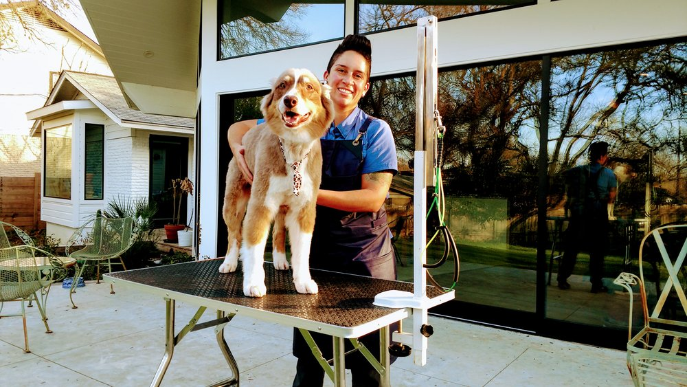 Compassionate Holistic Grooming