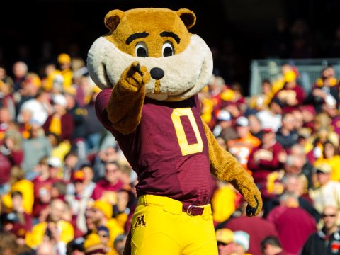 Google Go's mascot is a gopher, much like the Minnesota Golden Gophers.Hannah Foslien/Getty Images