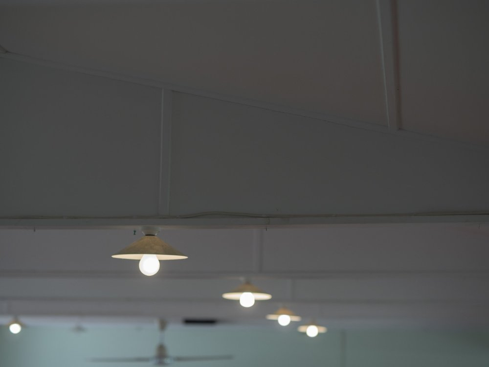 P1010560.jpg